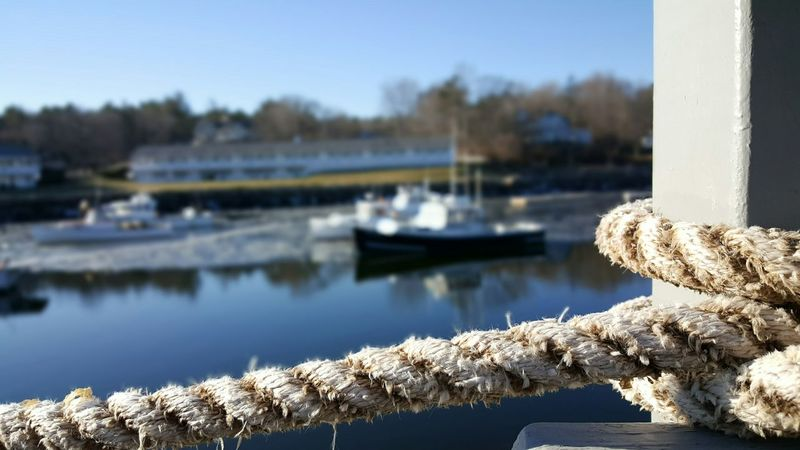 Perkins Cove (Ogunquit, ME) Marginal Way Coastal Views Moored Boats Reflection Knot Close-up Nature Focus On Foreground Backgrounds By The Sea Tranquil Scene Scenics Winter Cold Temperature Tranquility Floating Ice Water No People Outdoors Sky Day Boats And Moorings EyeEm Best Shots Maine Photography 🌲