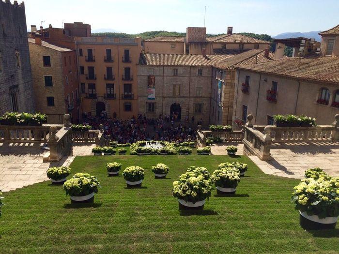Girona Gironamenamora Spring Spring Flowers Temps De Flors Tempsdeflors