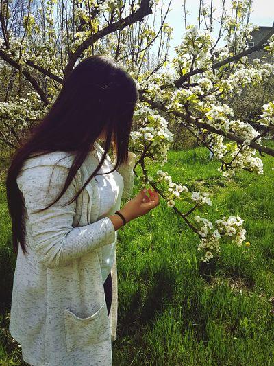 Прекрасный момент и мир Day Grass Flower
