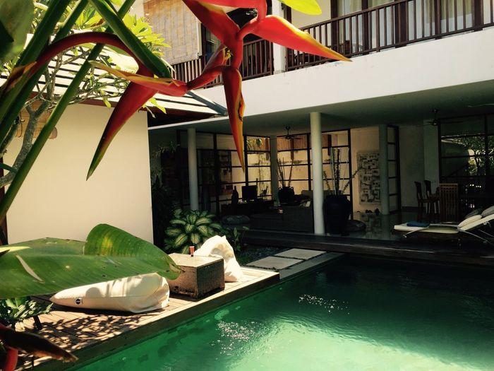 Bali Bali, Indonesia Villa Bali Villa Closetoparadise Paradise Pool
