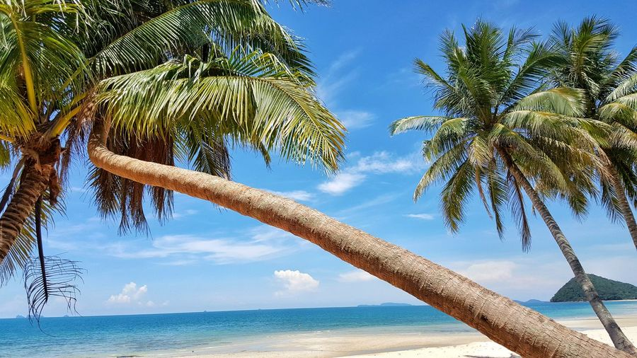 Sand Beach Sky Nature Sand Beach Sky And Clouds Summer Views Sunnyday☀️ Sea And Sky Sunrise Travel Destinations Water