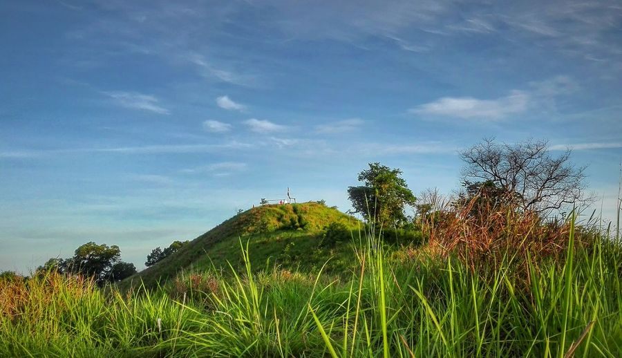 Tirig Hill, Telipok: A different perspective. Hill Hiking Beautifulborneo Gansau Northborneo Nature