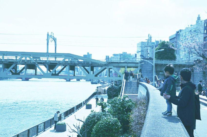 An idyllic day Japan Asakusa Japan Tokyo,Japan Spring Sumidariver Sakura