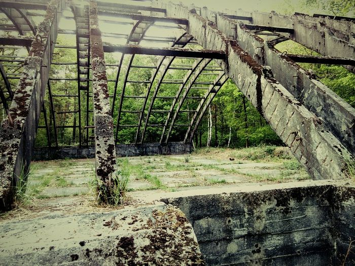 Some old world war 2 hangar. Or whats left of it. Airplane Hangar Outside Taking Photos Eyemphotography EyeEm Best Shots Landscape Urban Forest Germany