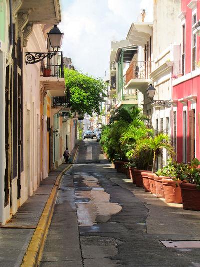 Beautiful and colorful little quiet street in San Juan Puerto Rico Houses San Juan Streets Of San Juan Architecture Building Exterior Built Structure City Colorful Houses Colorful Streetphotograpy Day No People Outdoors San Juan PR Sky The Way Forward