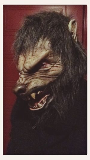 Halloween! Men Vargen åkte även en Kryssning med Birka under Halloween helgen.