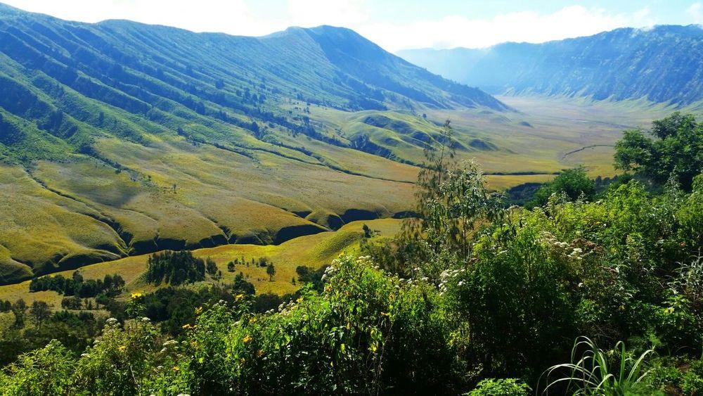 The Explorer - 2014 EyeEm Awards Landscape Nature EyeEm Nature Lover