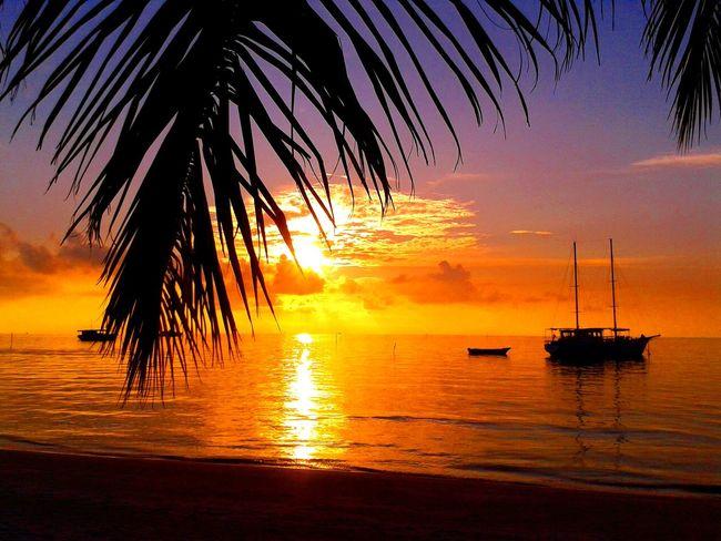 Maldives sunset 🌅 Sunset Sunset_collection Sunset Silhouettes Maldives Malediven  Meeru Island Meeru