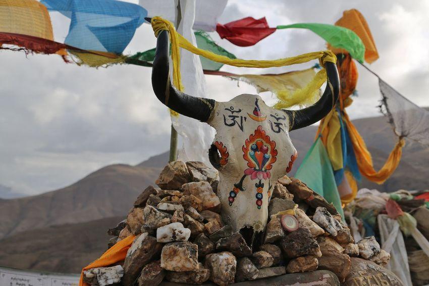 Тibet travel Nature No People Day Nature Reserve Tibet Travel Tibetan Buddhism
