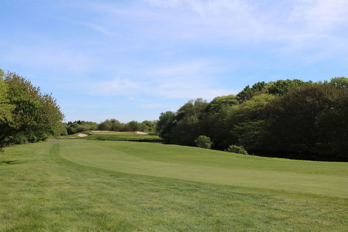 Fairway Golf Golf Course Golfcourse Golfing Green Landscape Landscape_Collection Landscape_photography Long Island Long Island, Ny Montauk Montauk Downs Nature New York Outdoor Photography Outdoors Outdoors Photograpghy  Scenery Scenery Shots Scenic Scenic Landscapes Scenics