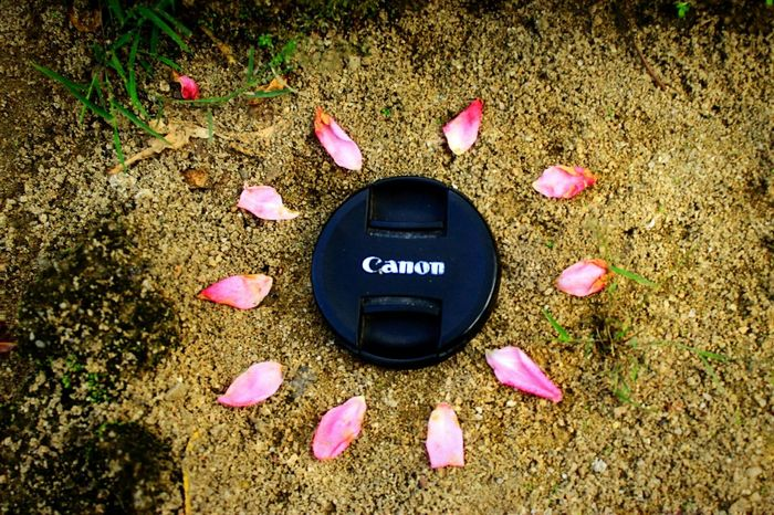 Canonphotography Canoneos Canoneos1100D Canon_photos Canon😉 Like4like Likeforlike Likes LIKE MY PICTURE! Thankful Brown Love ♥