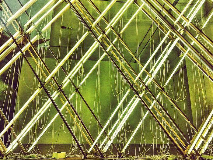 Kunst zu fotografieren ist keine Kunst Neon Neonlights Neon Licht Museum Modern Modern Art Art Kunst Installation Art Installation