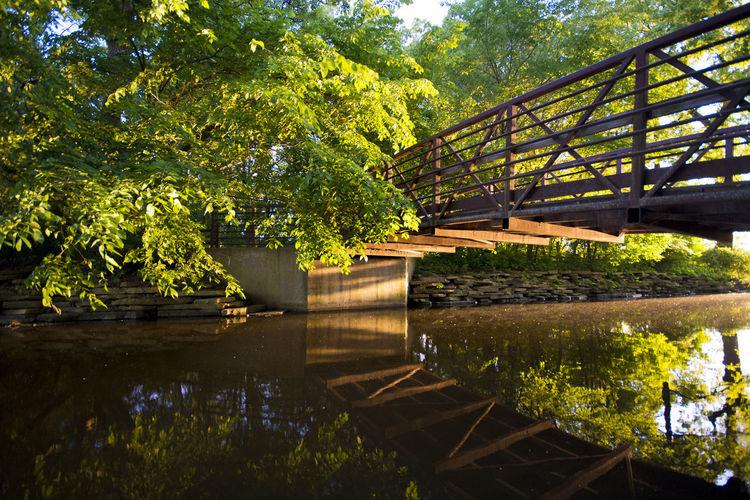 Footbridge over lake against trees