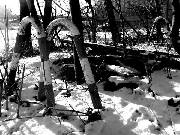 Absperrung Black And White Blackandwhite Sign In Snow