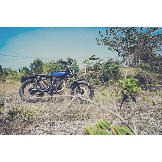 Scrambler Motorcycles Olympus Like4like followme swag photogrid summer vsco bali followalways travel following fashion canon love vscocam followbackteam hipster tagsforlikes instamood beautiful portrait teamfollowback me follow4follow vscogood HashTags photography instadaily