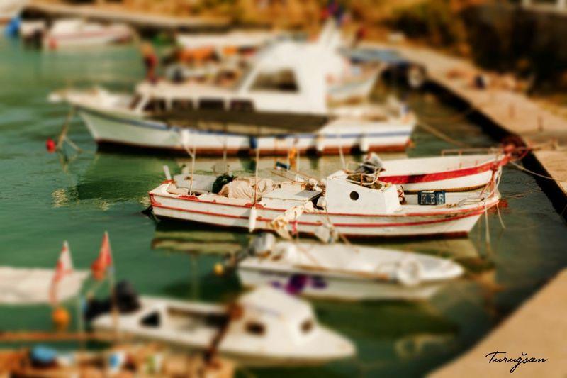 Cyprus Kibris Sea Seaside Sea View Boats Fisherman