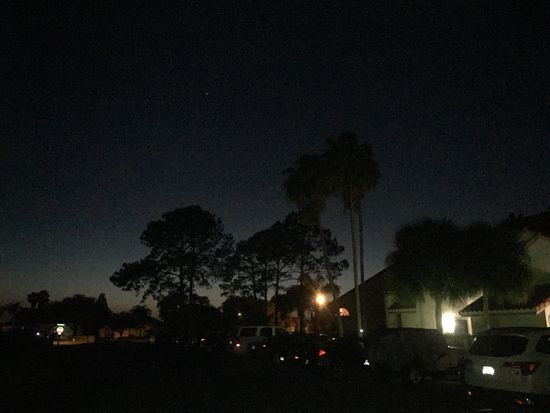 No Edit/no Filter Night Nightlife Florida Palm Tree Outdoors Listen Within Love Mylife Nature Tranquility Tadaa Community Tadaa Pocket_family