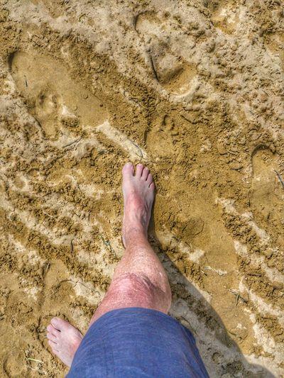 Low Section Beach Sand Dune Sand Human Leg barefoot Sunlight High Angle View FootPrint Shore Sandy Beach Foot Human Foot Personal Perspective Footwear Pebble Beach Feet Toe Sole Of Foot Pedicure Canvas Shoe Tire Track #FREIHEITBERLIN
