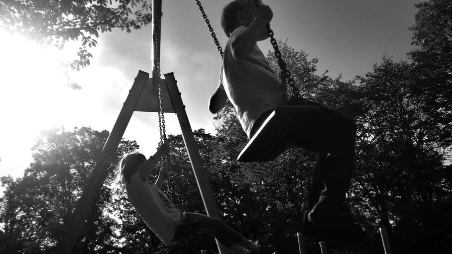 Blackandwhite Swinging View From Below Motion Action Tree Rope Swing Childhood Swing Playing Outdoor Play Equipment Silhouette Playground Sky