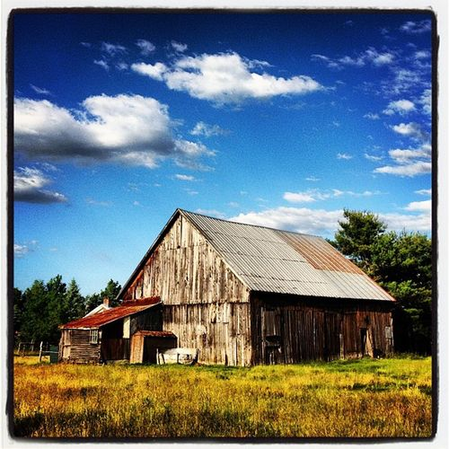 Scenic Vermont. #miltonvt #btv #vt Vermont_scenery 802 IPhoneography Miltonvt Landscape Vt_scene Scenery Vermont_scene Barn Greenmountainstate Rustic Scenic_vermont Photooftheday Vermont Scenic Instamood Milton Instagood Vt Btv Vt_scenery