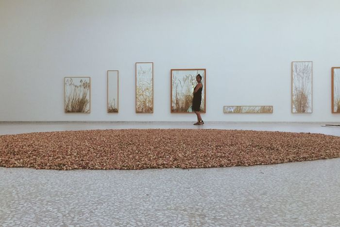 People Watching Visiting Art Simplicity Minimalism White Album Geometric Shapes La Biennale Di Venezia Venicebiennale2015 From Vienna To Milan