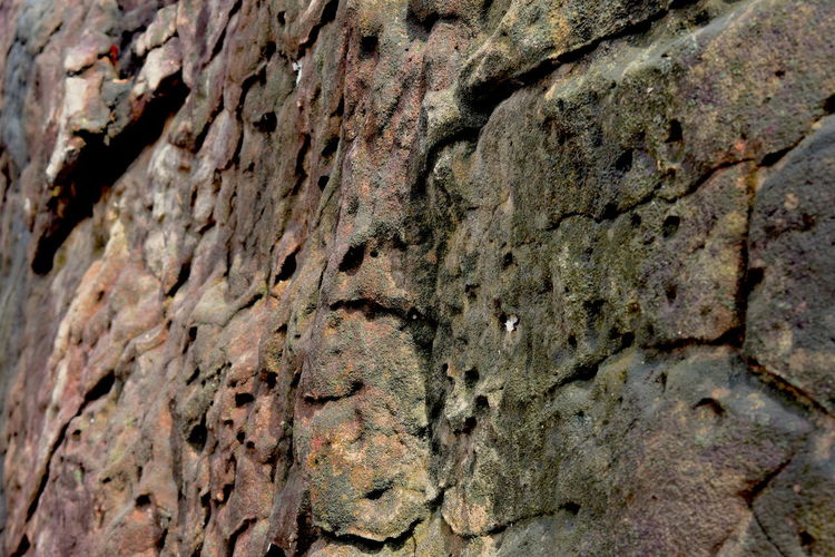Nature Rock Surface Close-up Day Natural Rock Surface As Background Nature No People Outdoors Rock Surface Background