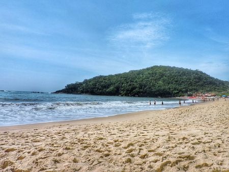 Beach Sky Blue Tranquility Nature Beauty In Nature Water Tree Praia Trindade RJ Scenics Sea Vacations