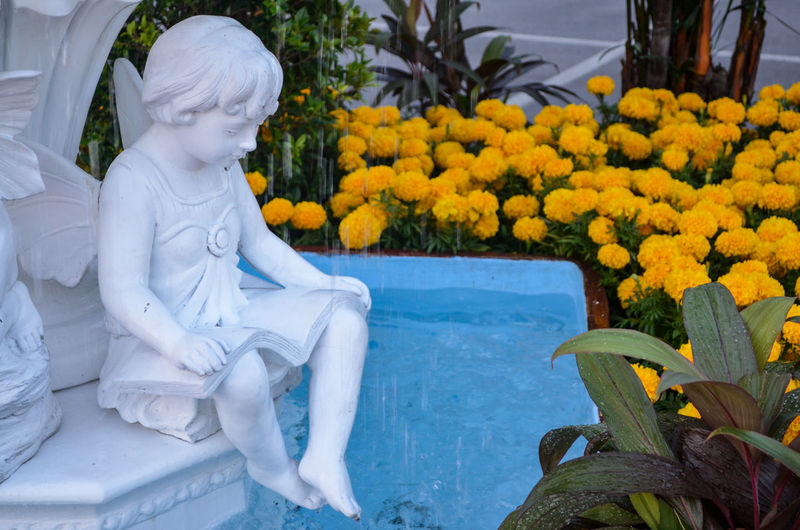 Low angle view of statue amidst flowering plants