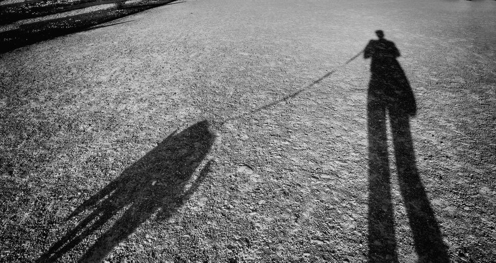 Shadows Shadow Photography Shadows And Silhouettes Silhouettes Black And White Photography Black And White Black & White Walking With My Dog Walking In The Park Week On Eyeem