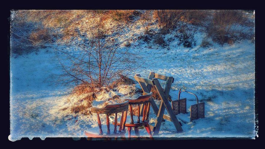Auto Edit From Google Photo Beautiful Winter Day Outdoors Nexus6P Stylized