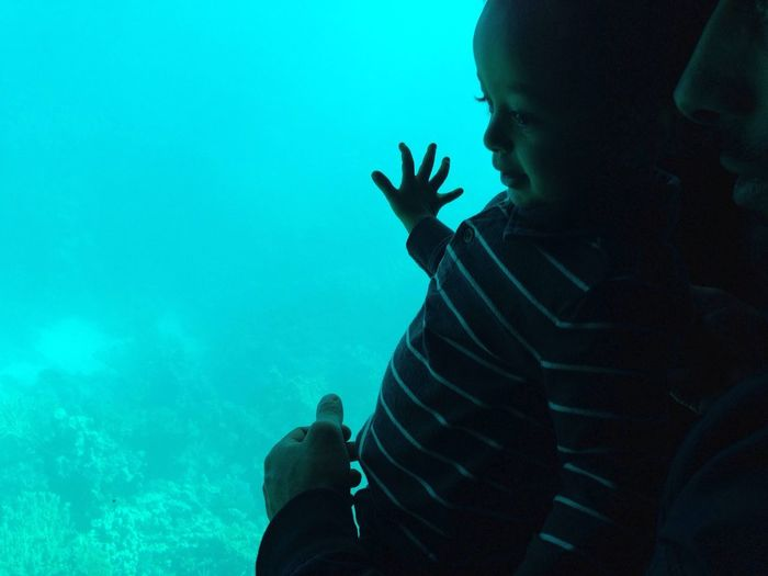 Traveling Home For The Holidays EyeEmNewHere Sea Underwater Blue One Person Real People Travel