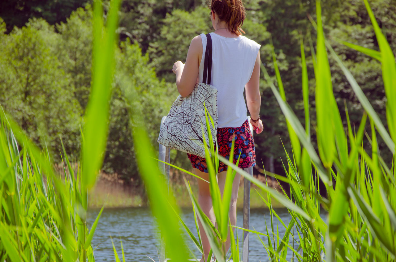 Rear View Of Woman Standing At Lakeshore Seen From Grass