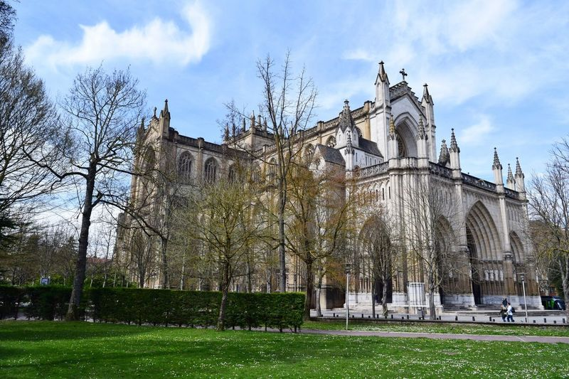 Catedral de Vitoria Urbanscape Urban SPAIN Basque Country Vitoria Cathedral Sky Architecture Built Structure Plant Building Exterior Tree Cloud - Sky Nature Grass Building Day Low Angle View The Past History Travel Destinations Outdoors Tourism City Travel