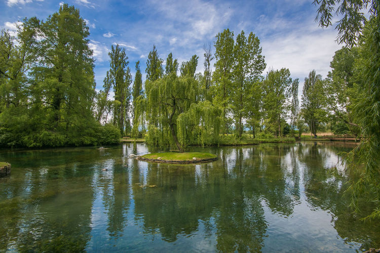Photo of weeping willow reflection in the Fonti del Clitunno, Umbria Fonti Del Clitunno Clitunno Campello Sul Clitunno Nature Landscape Landscape_Collection Landscape_photography EyeEm Best Shots Umbria Lake Italy Europe Spring Willow Tree Willow Weeping Willow Travel Destinations Travel Card Wanderlust Wallpaper Little Island Touristic Attractive Green Environment Springtime Tranquility Reflection Tree Water Plant Tranquil Scene Waterfront Beauty In Nature Green Color Sky Scenics - Nature Growth No People Day Non-urban Scene Cloud - Sky Idyllic Paradise Fantastic Amazing View Scenics Scenery