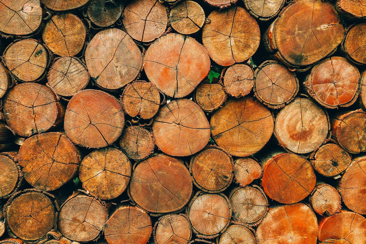Full Frame Shot Of Logs In Forest