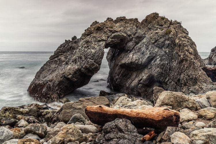 Driftwood on rock in sea against sky