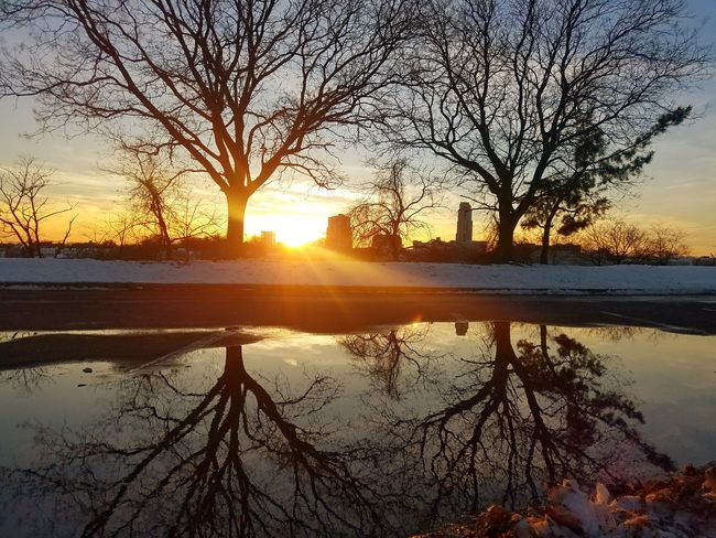 The melting snow created a beatiful reflective puddle (2/18/2018) Reflection Silhouette Sun Nature Sky Tree Tranquility Tranquil Scene Sunlight Scenics