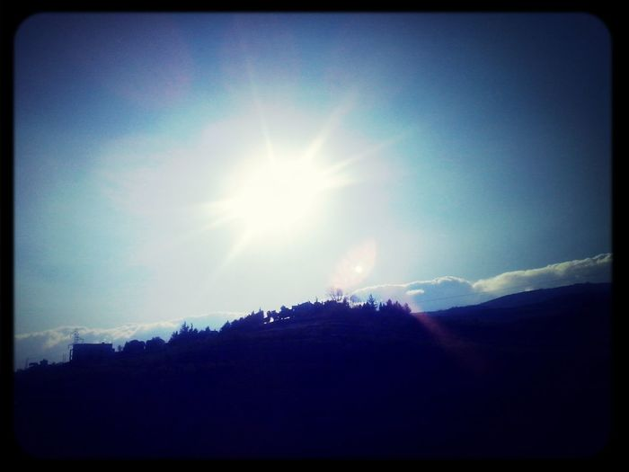 Enjoying The Sun