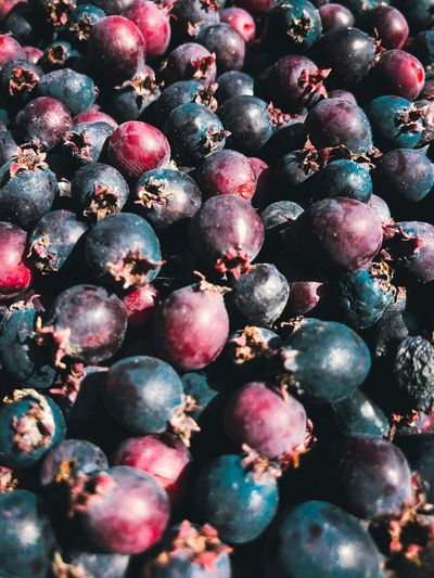 Beautiful, tasty and healthy shadberry EyeEmRussianTeam ягода фон ирга Food Berries Berry Shadberry Healthy Eating Fruit Food Food And Drink Berry Fruit Wellbeing Full Frame No People Backgrounds Blackberry Nature