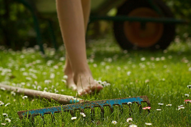 Low section of woman by gardening fork on grassy field