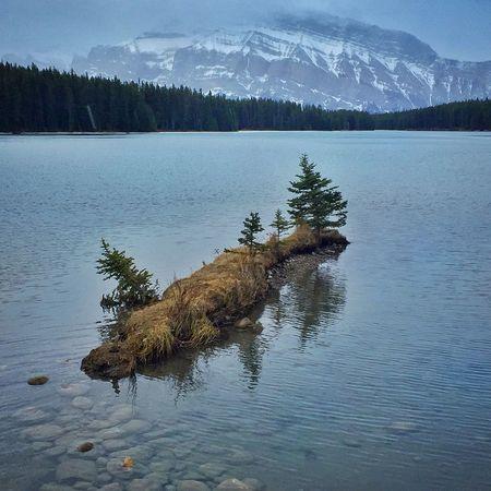 Two Jack Lake Banff National Park  Lake View Lakeshore Nature Landscapes Landscape Photography Nature Photography