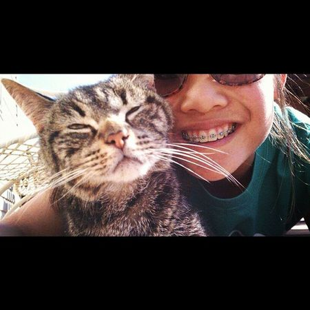 TBT  my favorite cat of all time,he was my baby?❤. And i miss him all the time. Stripey BlindCat Misshim FatCat LastYear Summer SunBathingOnTheDeck TheChillLife