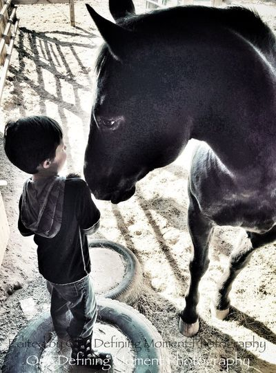 Everyday Joy For The Love Of Horses EyeEm Animal Lover Authentic Moments I Love My Horse Horses Appaloosa Grandson Children Photography Grandchildren