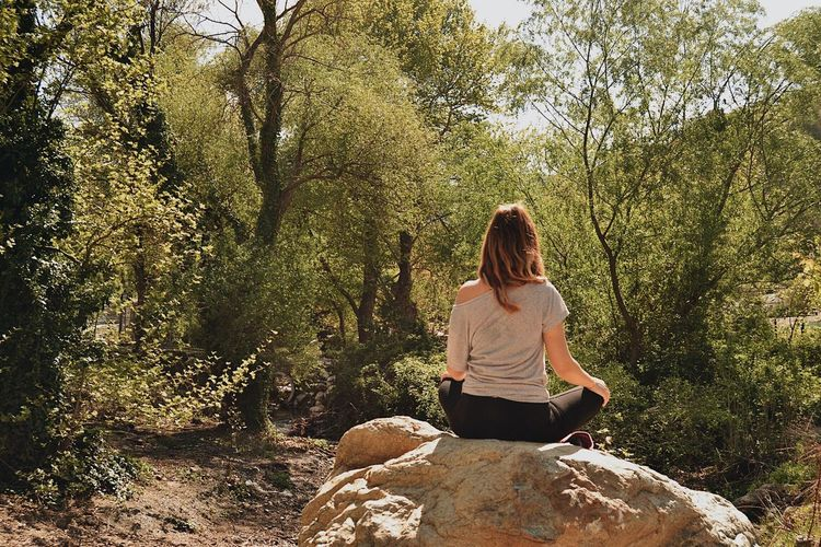Rear View Of Woman Sitting On Rock In Forest
