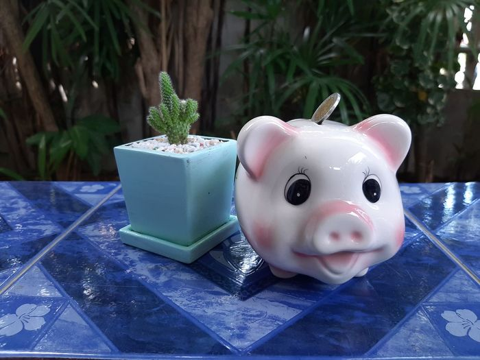 Close-up of small stuffed toy on potted plant