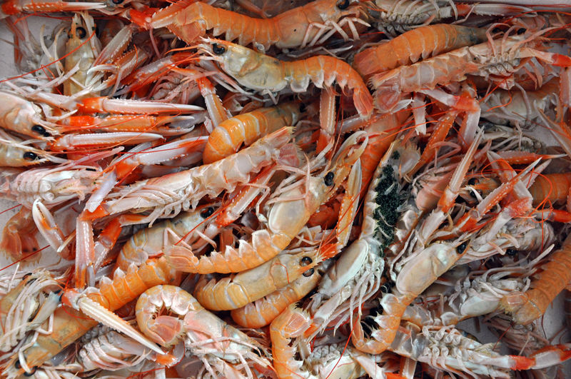 High Angle View Of Seafood In Market