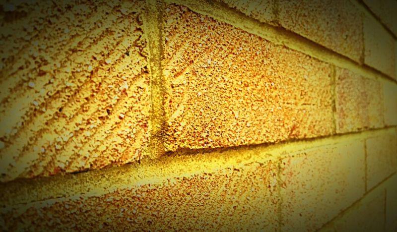 Wall Fresh Brick Brick Wall Nice House 43 Golden Moments Fine Art Photography