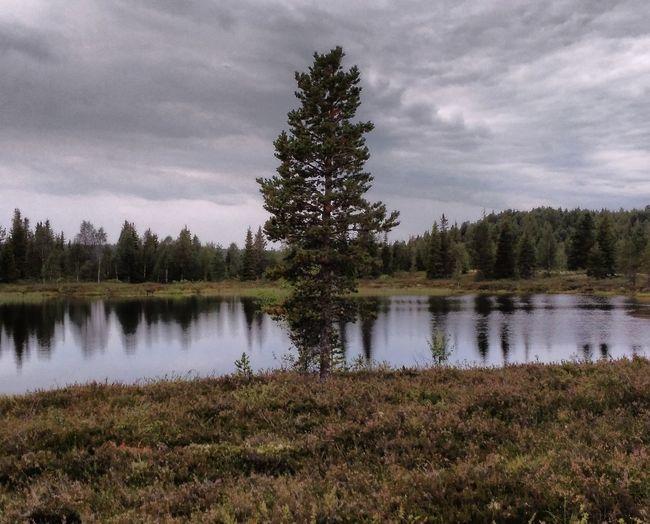 Peace Lake Sky
