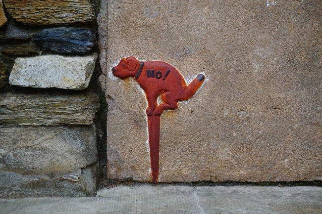 Streetart Dog Wall Funnygraph Here Belongs To Me Street Art/Graffiti