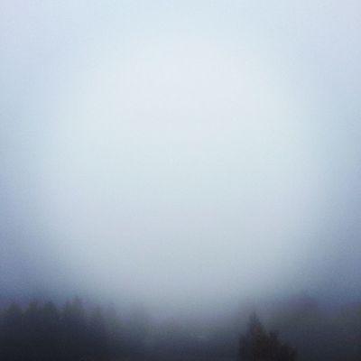 Nebel.